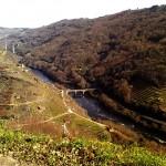 1. pontes entre Chantada e O Savinao