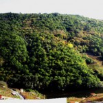 3. panoramica dende Chantada outono
